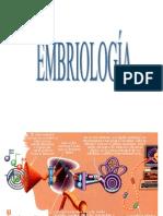 Fisiología  oído  2- 2008
