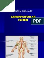 CSL Cardiovascular System