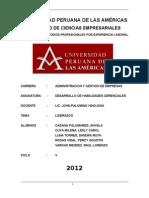 LIDERAZGO - Desarrollo de Habilidades Gerenciales - Pel 19