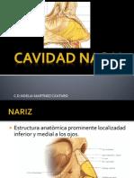 CAVIDAD NASAL.pptx