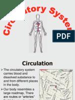 Circulatory System form5