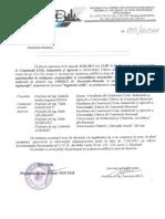 Chesca Alexandru-Basarab - Rezumat (1)