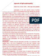 Treatment and Prognosis of IgA Nephropathy