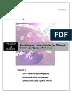 P1 Identificación de las células del Sistema Inmune en Sangre Periférica