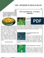 Remedii Florale Bach.pdf