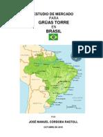 ESTUDIO DE MERCADO GRÚA TORRE BRASIL