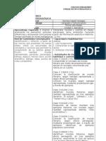NM1 Planificación de unidad 1 2013