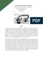 2013 FS Sem Globale Gesundheit Plan Final