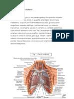 Pneumonite de Hipersensibilidade