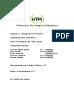 Informe Del Proyecto Investigacion de Mercado