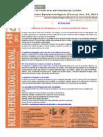 Boletín Semana Epidemiológica 05-2013
