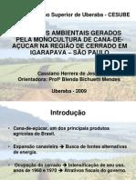 Apresentação FINAL de TCC Cassiano Herrera