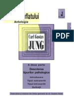 Jung - Descrierea Tipurilor Psihologice