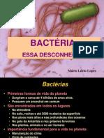 Item 02 - Bacteria - Essa Desconhecida