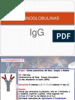 37062815-INMUNOGLOBULINA