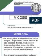 Micosis 2011