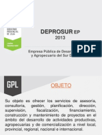 Informe Deprosur Ep 2013