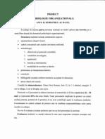 Proiect organizationala