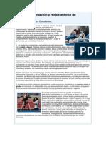 1.2CARACTERIZACIÓN DE LOS ESTUDIANTES.docx