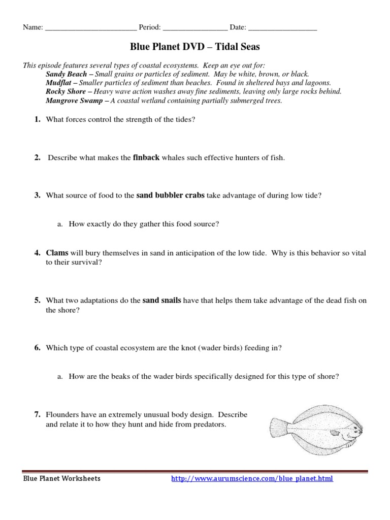 Blue Planet The Open Ocean Worksheet Answers Worksheet List