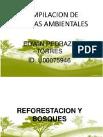 Compilacion de Normas Ambientales Trabajo Final