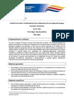 Seminario_Problemáticas SLA_2013_final