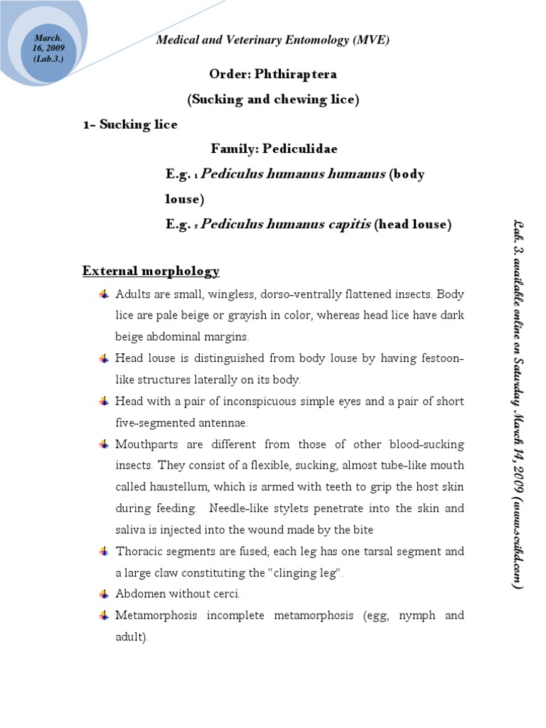 School shop accidents report page