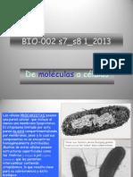 BIO-002 s7_s8 1_ 2013 De moléculas a células