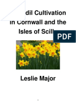 Daffodil Cultivation in Cornwall and Isles of Scilly - Leslie Major