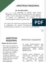 Anest Raqui, Epi y Regionales