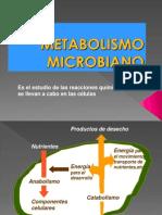METABOLISMO MICROBIANOo