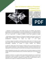Exploitation minière au Cameroun (Articles).docx