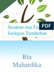 Strukur dan fungsi jaringan tumbuhan IPA.pptx
