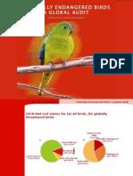 CR Birds Global Audit (1)
