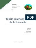 Teoria Cromosomica de La Herencia