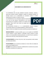 CARBOHIDRATOS TEMA III.docx