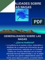 Generalidades Sobre Las Nagas[1]