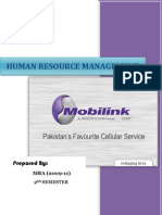 HR Project (Mobilink)