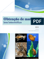 obtenodematria-seresheterotrficos-110218181055-phpapp02