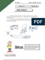 III Bim - 2do. año - Guía 1 - Reino Animalia