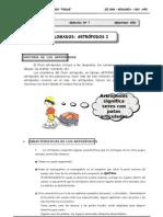 III Bim - 2do. año - Guía 7 - Celomados - Artrópodos I