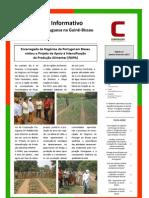 Boletim nº 12 da Cooperação Portuguesa na Guiné-Bissau - janeiro-fevereiro de 2013