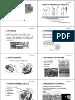 CITOLOGIA 1_PEP.pdf