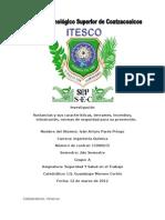 Investigación SST Iván Arturo Parés