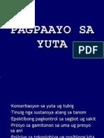 Pagpaayo Sa Yuta Ug Ani Pinaagi Sa Org Ani Kong