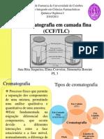 Cromatografia Em Camada Fina (CCF)