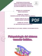 s. Vascular Linfatico