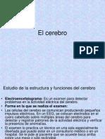 Ocw.udem.Edu.mx Cursos de Profesional Psicologia General Ch7