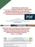 Efecto Protector Del Extracto de Calendula Officinalis