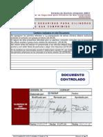 SSOst0005 Cilindros de Gas Comprimido v02